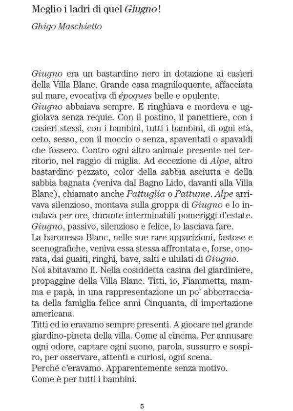 Pagine_interne_Radicali liberi. Poesie 1980-2011_maschietto